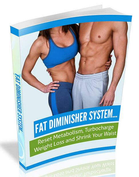 fat_diminisher_system